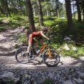 KTM 2019 - czym wyróżnia się nowa kolekcja rowerów?