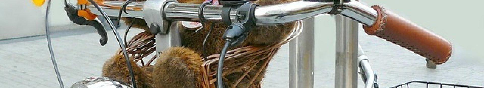 Użyteczne dodatki, czyli akcesoria rowerowe