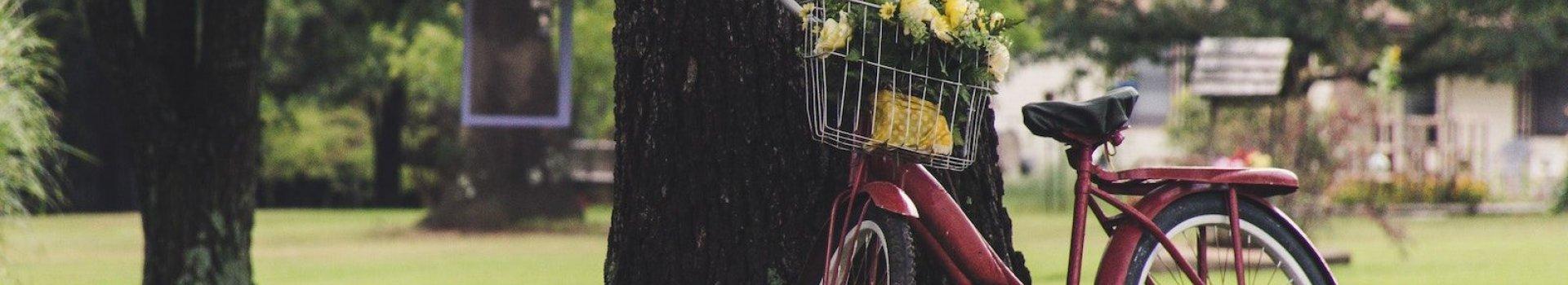 Bagażniki rowerowe na podróże małe i duże