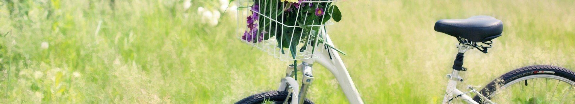 Rower miejski – komu posłuży najlepiej?