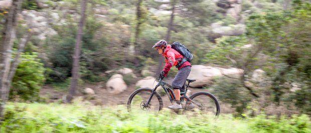 Rower 29 cali - przegląd nowych propozycji na rynku