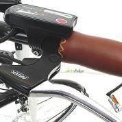 Rower elektryczny EcoBike Holland funkcja1